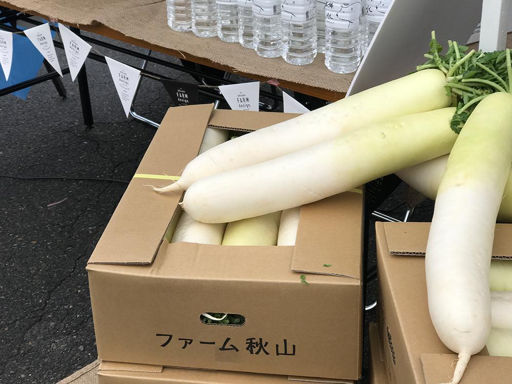 栄村にんじん・大根ロゴ制作